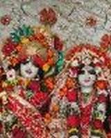 Rajiv Malik - photograph - India News